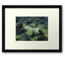 Christmas pine Framed Print