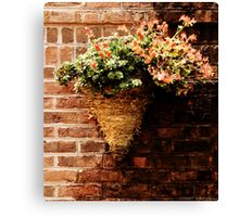 Flowers on a wall  Canvas Print