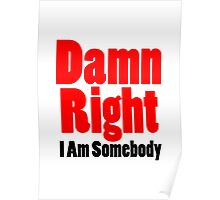 Damn Right I Am Somebody Poster