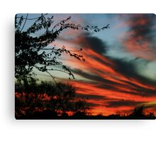 10-30 set 18 Canvas Print