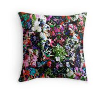 Wall Of Color Throw Pillow