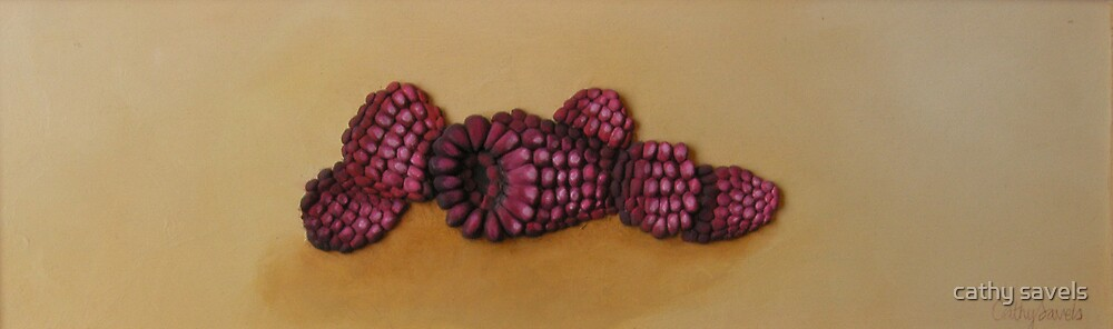raspberries by cathy savels