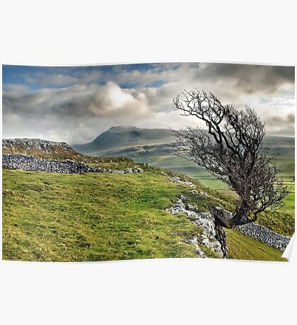 Ingleborough from Twistleton Scar, Yorkshire Dales Poster