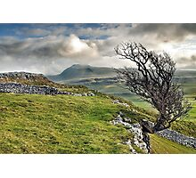 Ingleborough from Twistleton Scar, Yorkshire Dales Photographic Print