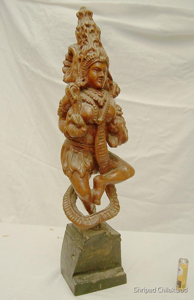 The Godess by Shripad Chilakwad