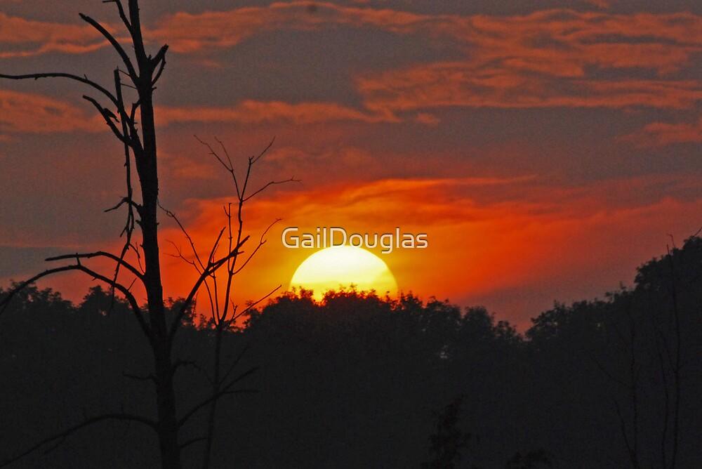 Days Ending by GailDouglas