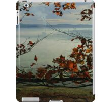Hope Valley iPad Case/Skin