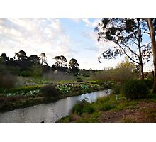 Fyansford Country Photographic Print