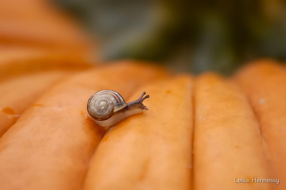 Tiny Slimy by Leisa  Hennessy