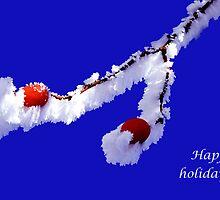 happy holidays rosehip by Cornelia Togea