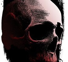 Abstract Skull by Roger Price