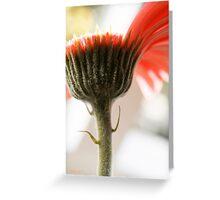 in limbo Greeting Card