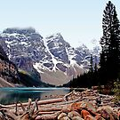 $20  Bill Scene - Moraine Lake, AB. by Vickie Emms