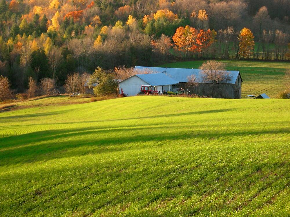 Farm In the Hills by nikspix