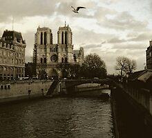 Notre Dame - Paris by LOREDANA CRUPI