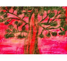 Scenic Tree Photographic Print