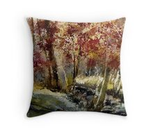 watercolor ywoigne Throw Pillow