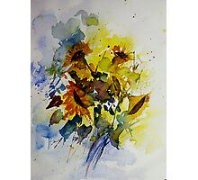 watercolor sunflowers Photographic Print
