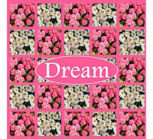 DREAM IN WHITE DAISIES AND PINK FLOWERS Photographic Print
