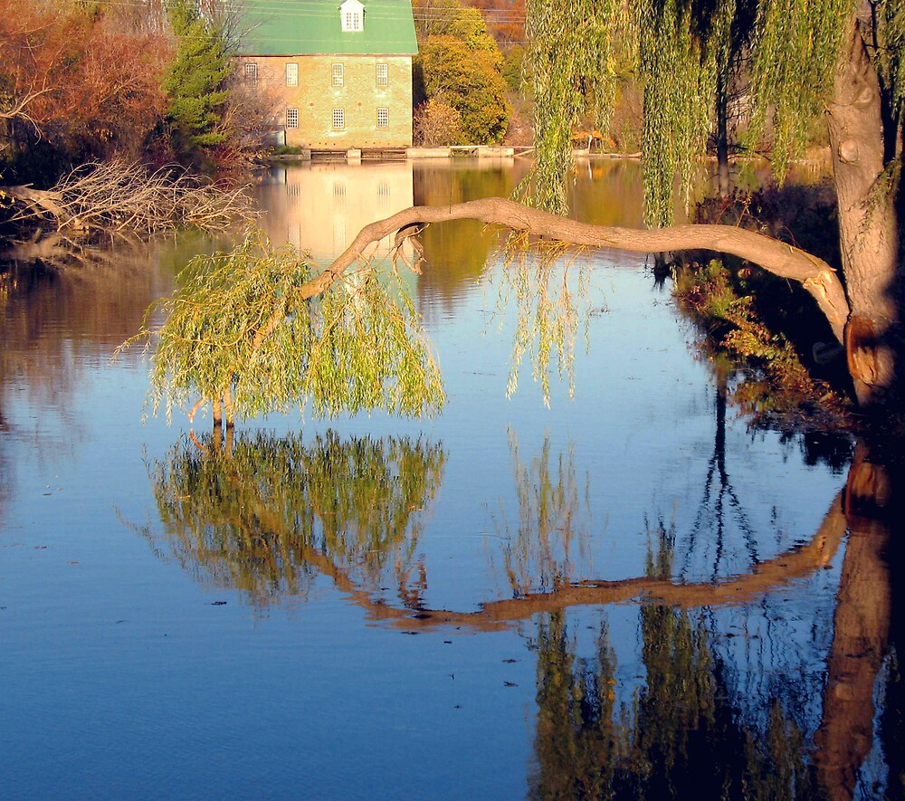 Fowlds Mill 2 by nikspix