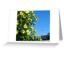 Sunny Flowers Greeting Card