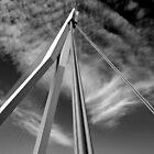 The Bridge in B&W by Adri  Padmos