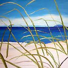 Sand-dunes  by gillsart