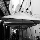 Paris Scene by Jasna