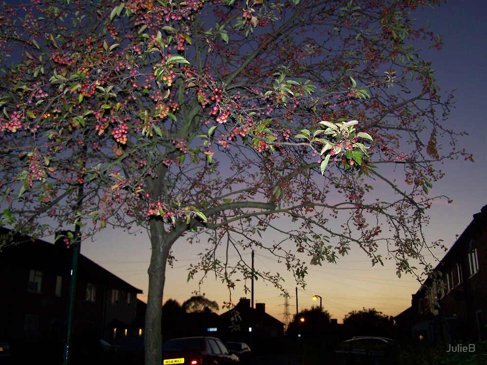 Twilight by JulieB