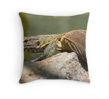 MONITOR........ Throw Pillow
