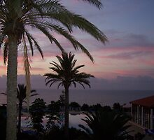 sunset/canaries by JulieB