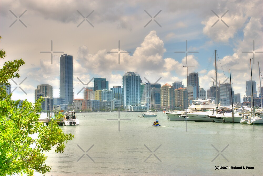 Miami in View by photorolandi