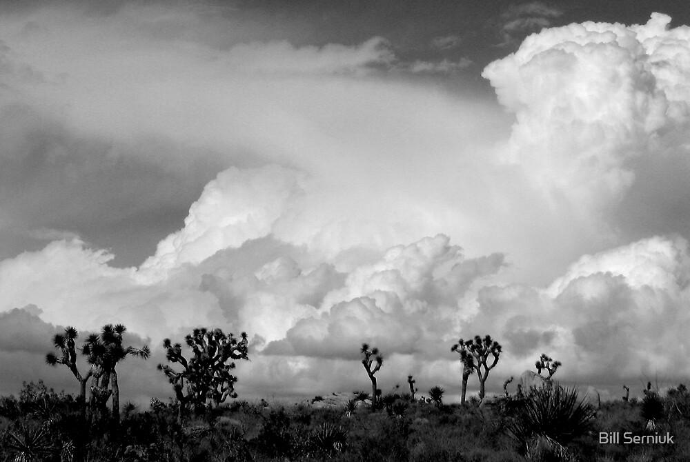 Desert Clouds by Bill Serniuk