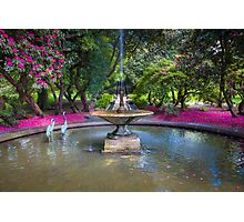 Holker Hall - Neptune Cascade and Fountain Photographic Print
