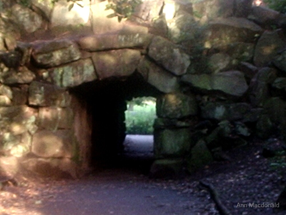 Through the tunnel by Ann Macdonald