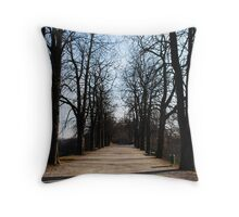 Ljubljana // Slovenia Throw Pillow
