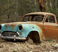 Old Timer by Steve Broadley