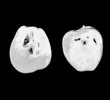 Juicy Fuzz (X-ray) by Gavin King