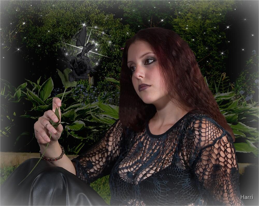 The Black Rose Fairy by Harri