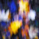 A Splash of Winter Colour by James  Key