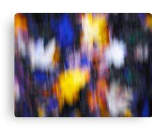 A Splash of Winter Colour Canvas Print