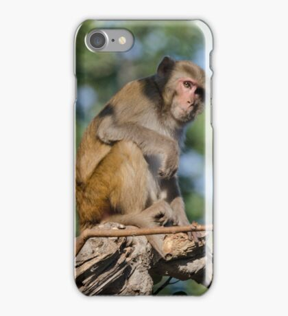 Monkey in Thought iPhone Case/Skin