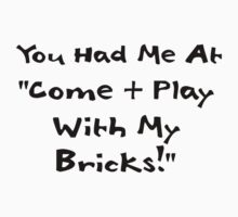 You Had me at Come and Play with My Bricks by Customize My Minifig