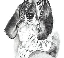 Basset II by Laura J Smith