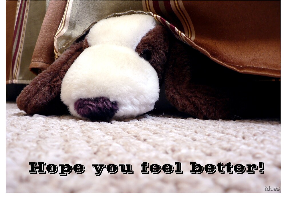 Stuffed Dog Get Well Greeting Card by tdoes