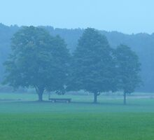 three trees and a wagon by Nina Andrews