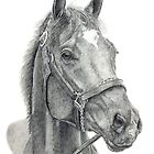 Barbaro - America's Champion by Laura J Smith