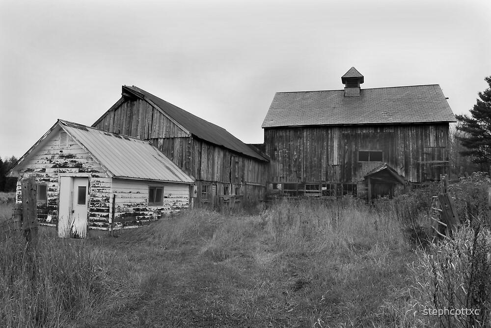 Barn in Weston by stephcottxc