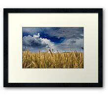 Landscape: 'Storm Over the Wheatfields 1' Framed Print