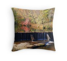 Pool of overflowing color Throw Pillow